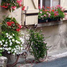 Bike flowers pot