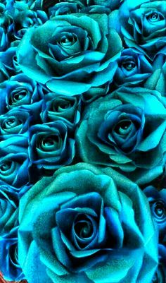 Iphone Backgrounds, Phone Wallpapers, Glitter Phone Wallpaper, Pretty Photos, Colorful Wallpaper, Tiffany Blue, Blue Flowers, Flower Power, Adventure Travel