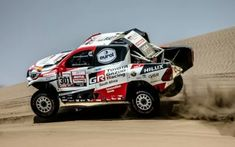 Rallye Paris Dakar, Rallye Raid, Gatos
