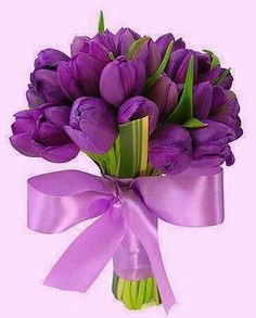 Exactly how i want my bouquet! Purple tulip bouquet with leaves and ribbon Blue Lotus Flower, Purple Tulips, Wedding Bouquets, Wedding Flowers, Wedding Plants, Tulip Bouquet, Flower Bouquets, Deco Floral, All Things Purple