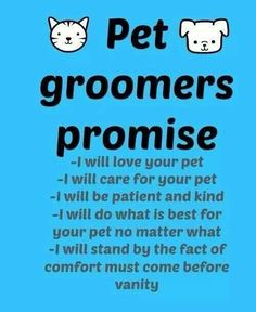 Pin By The Groomers Profit Generating Kit On Groomers Advertising Templates Amp Ideas Dog