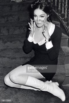 Photo d'actualité : Actress Julie Newmar attending 'Maltese Pippy's...