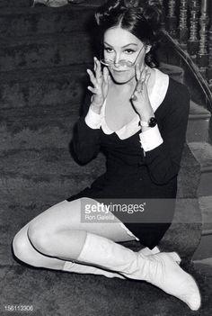 Photo d'actualité : Actress Julie Newmar attending 'Maltese Pippy's...