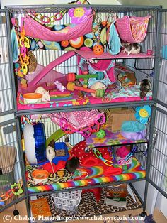 I would love to have a rat cage like this