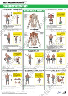 Fitness Illustrated - Instructional exercise illustrations from illustrator Matt. Fitness Illustrated - Instructional exercise illustrations from illustrator Matt Lambert Bodybuilding, Weight Training, Weight Lifting, Weight Loss, Weight Gain, Fitness Motivation, Muscle Anatomy, Shoulder Workout, Shoulder Exercises