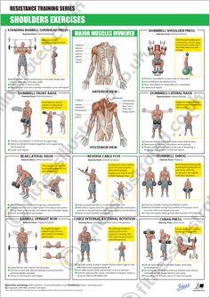 Gimnasio Illustrated - ilustraciones de ejercicios de instrucción de ilustrador Matt Lambert