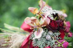 burgundy florals - Ladyslipper orchids. That is all. GWS