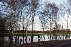 Elvaston Castle Country Park 30.12.12 by mattburley, via Flickr