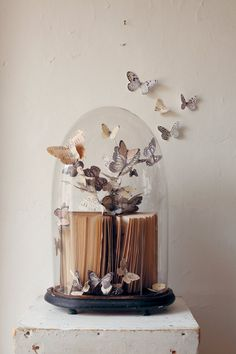 Tutorial to make paper butterflies Glass Dome Display, Glass Domes, Cloche Decor, Diy And Crafts, Paper Crafts, Paper Butterflies, Butterfly, The Bell Jar, How To Preserve Flowers
