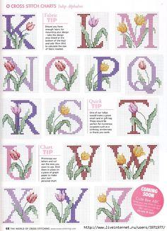 Tulip Letters K-Z