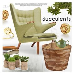 """Cacti + Succulents"" by totwoo ❤ liked on Polyvore featuring Rove Concepts, Dot & Bo and Price & Kensington"