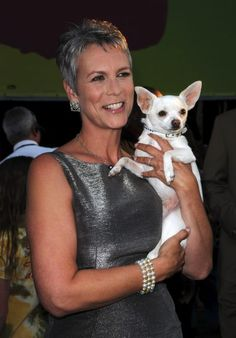 """Jamie Lee Curtis and Cloe at the Walt Disney Pictures' Premiere of """"Beverly Hills Chihuahua"""" ..."""