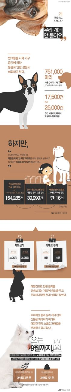 반려견 '목줄', 잊지 마세요! [인포그래픽] #dog / #Infographic ⓒ 비주얼다이브 무단 복사·전재·재배포 금지