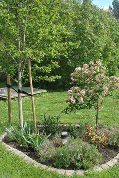 Rund rabatt Love Garden, Green Garden, Front Garden Landscape, Garden Landscaping, Garden Inspiration, Garden Ideas, Patio, Plants, Outdoor