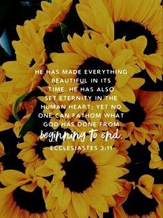 Ecclesiastes with sunflowers Bible Verses Quotes, Bible Scriptures, Faith Quotes, Baby Scripture, Wisdom Scripture, Biblical Verses, Sad Quotes, Soli Deo Gloria, Give Me Jesus
