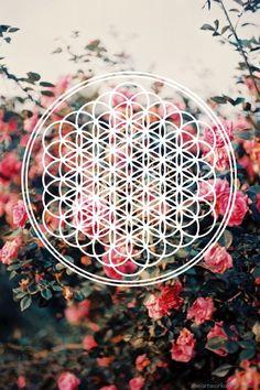 Flower of life / found myself a good background
