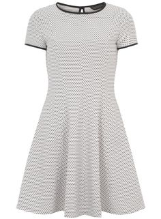 Ivory Spot Fit and Flare Dress
