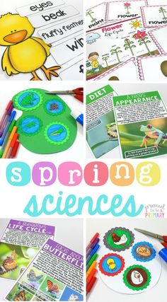 Spring science and non-fiction ELA resource for teachers that includes lessons and activities about frogs, chickens, butterflies, and flowers. There are lessons on animal life cycles, labeled diagrams, fact finding, vocabulary, and animal research projects. #animalscience #lifecycles #springscience #springactivities #scienceforkids