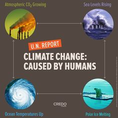 U.N. report: Climate Change: Caused by humans