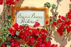 Hotel Buca di Bacco - Positano: Restaurant Amalfi Coast.