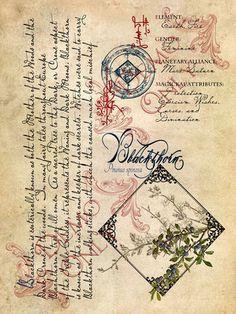 Caclking Cauldron BOS ~ Blackthorn page; Dark magicks pages