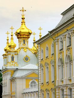 russia  peterhof  architecture  gold  tower  cathedral