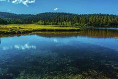 Duck Creek Village Pond