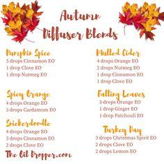 autumn-diffuser-blends-the-oil-dropper