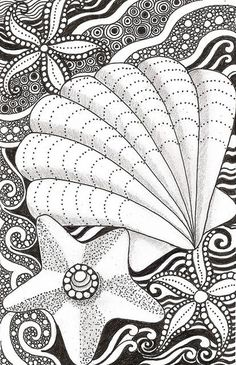 Shell and starfish by banar, via Flickr