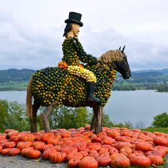 Pumpkin exhibition Switzerland, Giraffe, Pumpkin, Animals, Felt Giraffe, Pumpkins, Animales, Animaux, Giraffes