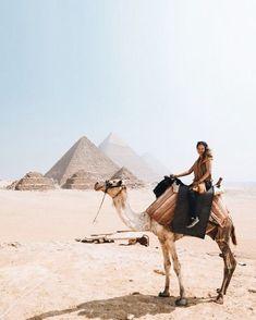 0b664b5f058c  travel  adventure  wanderlust  dream  camel  egypt Travel Bugs