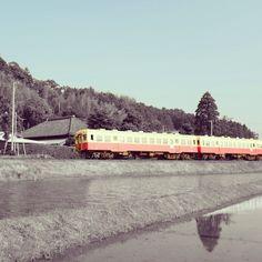 黄色と赤の電車 #小湊鐵道