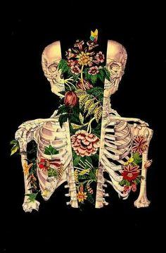 Nace de mí... Anatomy Art, Human Anatomy, Dark Drawings, Tattoo Drawings, Different Kinds Of Art, Artist Portfolio, Skeleton Art, Cute Wallpapers, Human Art