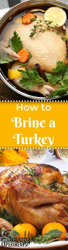 How to Brine a Turkey- a step-by-step guide for brining turkey, tips for a better turkey, how to brown turkey skin and a recipe for juicy turkey. #turkeybrinerecipe #thanksgivingturkeyrecipe www.savoryexperiments.com via @savorycooking