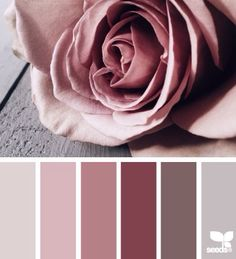 Truffle/dusky pink/mauve/grey/chocolate/cream