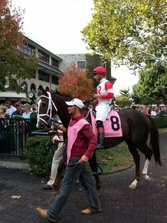 Coalport headed out for his Keeneland win - 10/15/16.