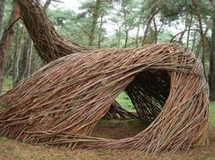 """Sahara,"" living art installment by sculptor and environmental artist Will Becker. Willow branches planted and woven into standing tunnels connected to the forest trees. Lommel, Belgium."