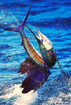 Mutlu Patilerr: Kılıç Balığı / Sailfish