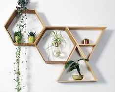 Hexagon Shelves Honeycomb Shelf Floating Hexagon Shelf | Etsy Geometric Shelves, Honeycomb Shelves, Hexagon Shelves, Decorative Shelves, Floating Plants, Floating Shelves, Plant Shelves, Wall Shelves, Kitchen Shelves
