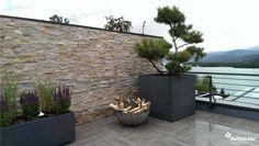 Kiefer-Bonsai auf einer Dachterrasse in Kombination mit Birkenstämmen, Lavendel, Salbei und Gräsern Kiefer Bonsai, Klagenfurt, Backyard, Patio, Gras, Outdoor Decor, Plants, Home Decor, Sage