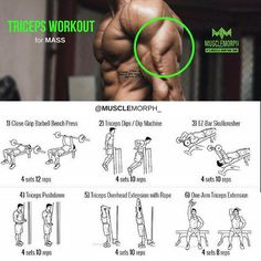 Step by step guide to how to Triceps workout