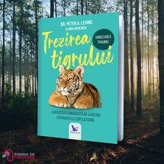 Află care sunt lecțiile naturii pentru vindecarea traumei! Cartea Trezirea tigrului oferă o viziune nouă și plină de speranță despre acest domeniu sensibil. Ea pornește de la faptul că omul este o ființă unică, dotată cu instincte puternice și sănătoase.