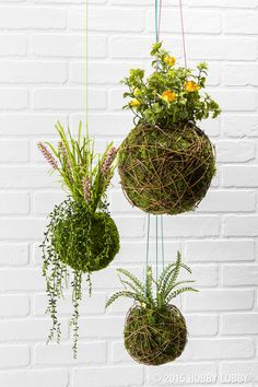 Grow some green without the watering can with ready-to-go moss balls & moss-filled vine balls! Just push your blooms into the center—no glue required!