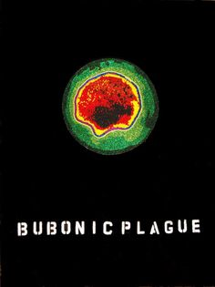 """Bubonic Plague   Back Talk, by Ruth Cuthand. """"One of the Prairies' most important contemporary artists takes an unflinching look at Canada's uneven history of cultural reciprocity."""""""