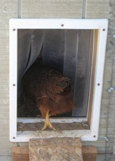 door flaps keep in heat and helps with ventilation. This is exactly what I was imagining. #chickens #rabbits