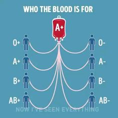 Blood Type Chart, Different Blood Types, Blood Groups, Blood Donation, Useful Life Hacks, Fitness Workouts, Fitness Motivation, Things To Know, Best Funny Pictures
