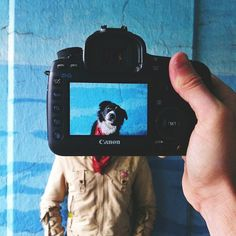 Hilarious Mash-Up Portraits of Pets and Their Owners - My Modern Metropolis