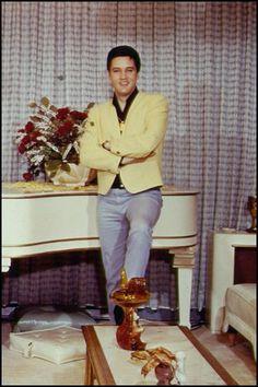 Elvis Presley à Graceland. Elvis Presley House, Elvis Presley Graceland, Elvis Presley Family, Elvis Presley Photos, Elvis And Priscilla, Lisa Marie Presley, Priscilla Presley, Memphis Tennessee, Memphis Usa