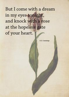 But I come with a dream in my eyes tonight, and knock with a rose at the hopeless gate of your heart. | Quote: E.E. Cummings | Inspirational Love Quotes and Poetry | -Erica Massaro, EDMPrintedEphemera