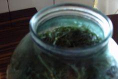 Frunze de vita de vie pentru iarna How To Dry Basil, Herbs, Life, Herb, Medicinal Plants